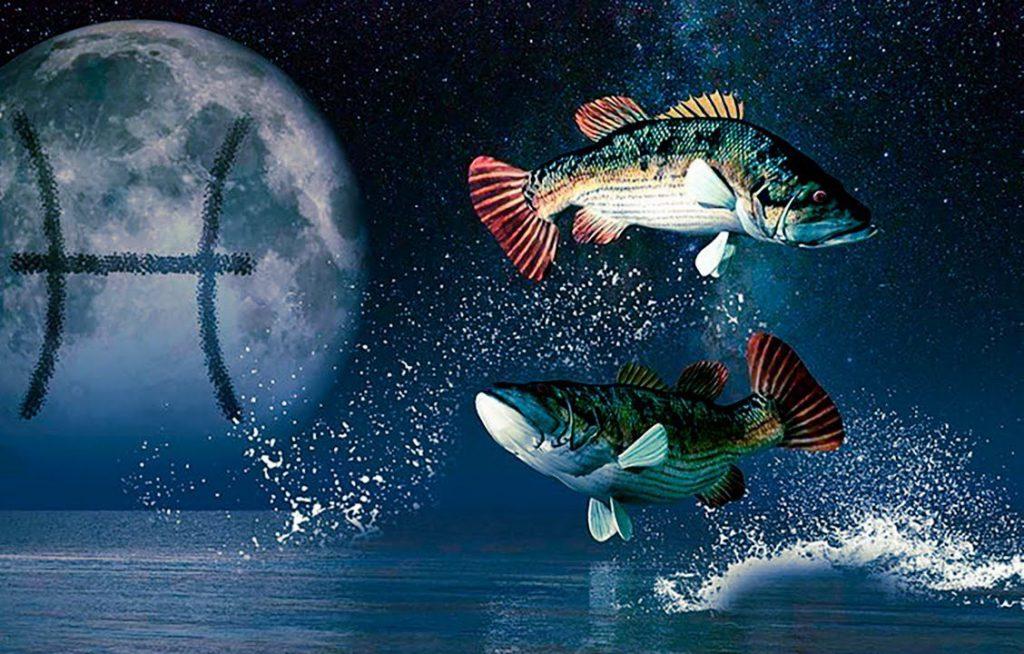 """Картинки по запросу """"Гороскоп на 2020 год Рыбы"""""""""""