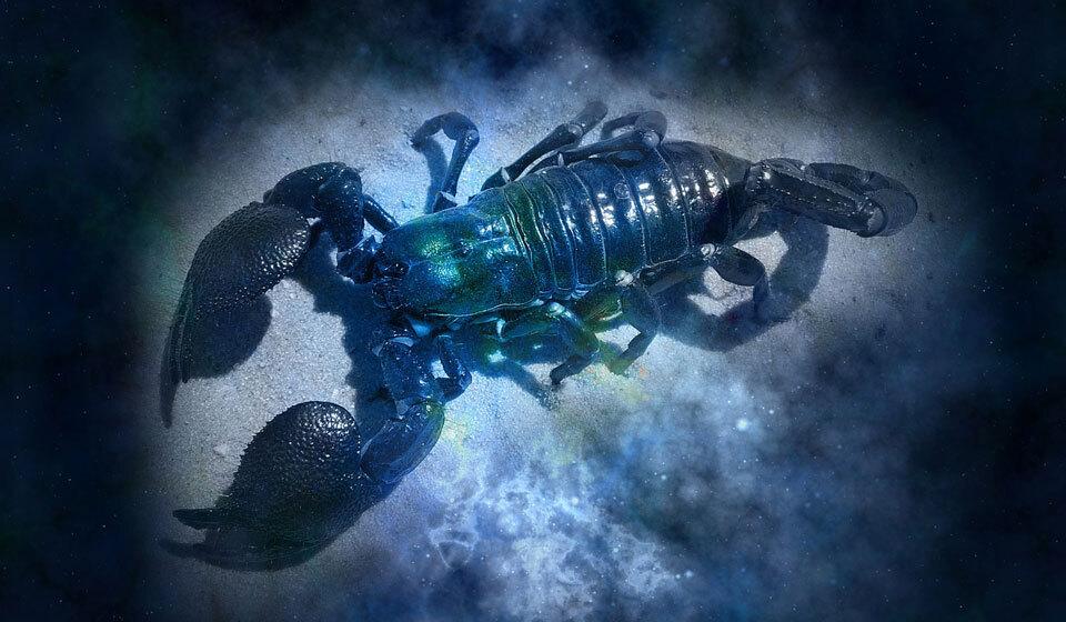 "Картинки по запросу ""гороскоп на 2020 год скорпион"""""
