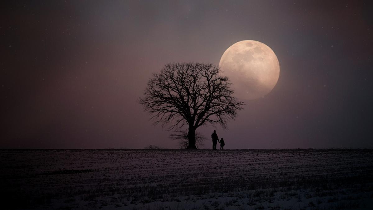 Лунный календарь дел на завтра: что нельзя делать в полнолуние, 14 ...