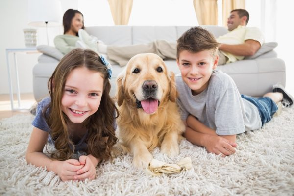 Midwest Contractor Happy Family with Dog   Midwest Contractor